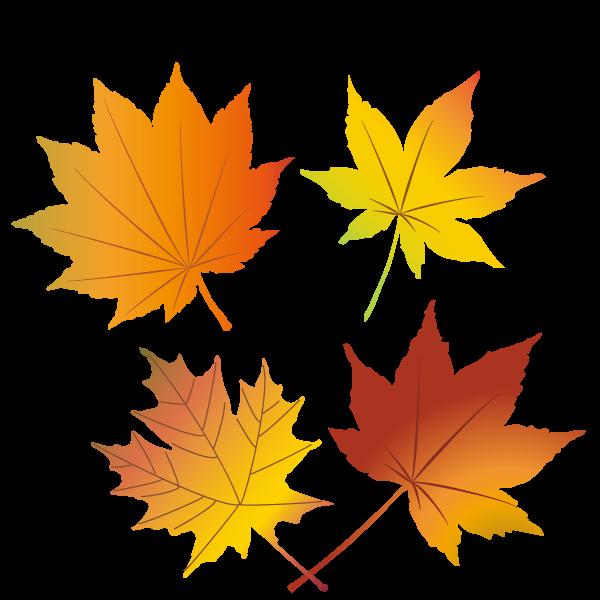 秋におすすめの商用利用可能な無料イラスト素材