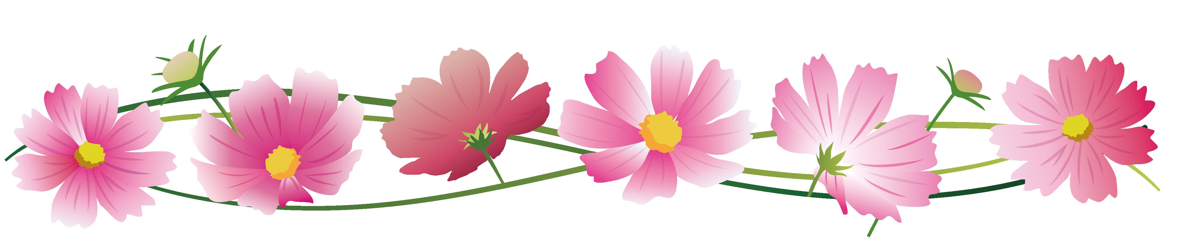 青空とコスモスの花イラスト
