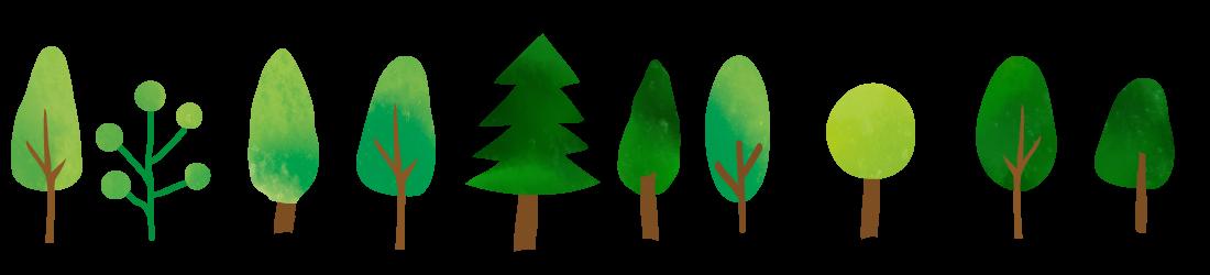 木々のライン