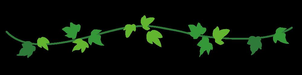 アイビーの葉っぱライン