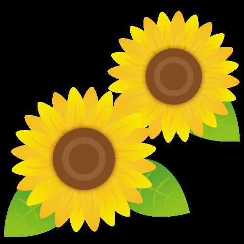 ひまわりの花イラスト
