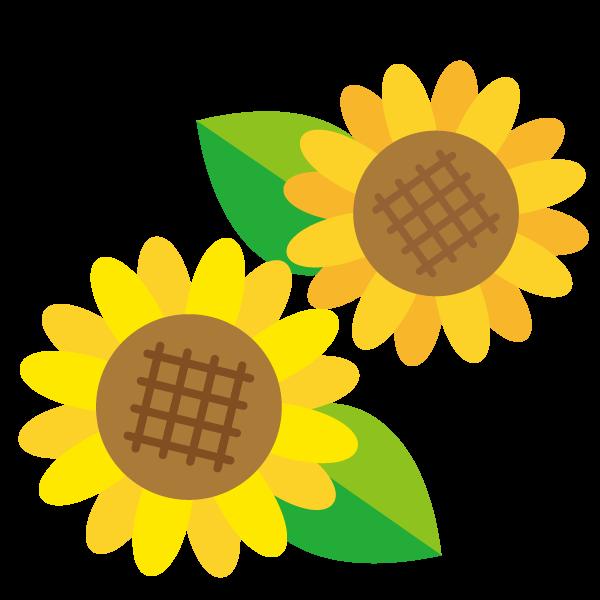 かわいいひまわりの花のイラスト