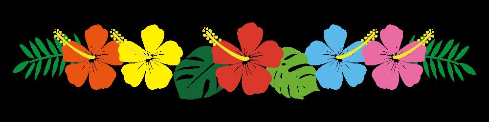 ハイビスカスの花のライン