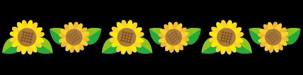 ひまわりの花のライン